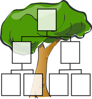family-tree-297812__340.png